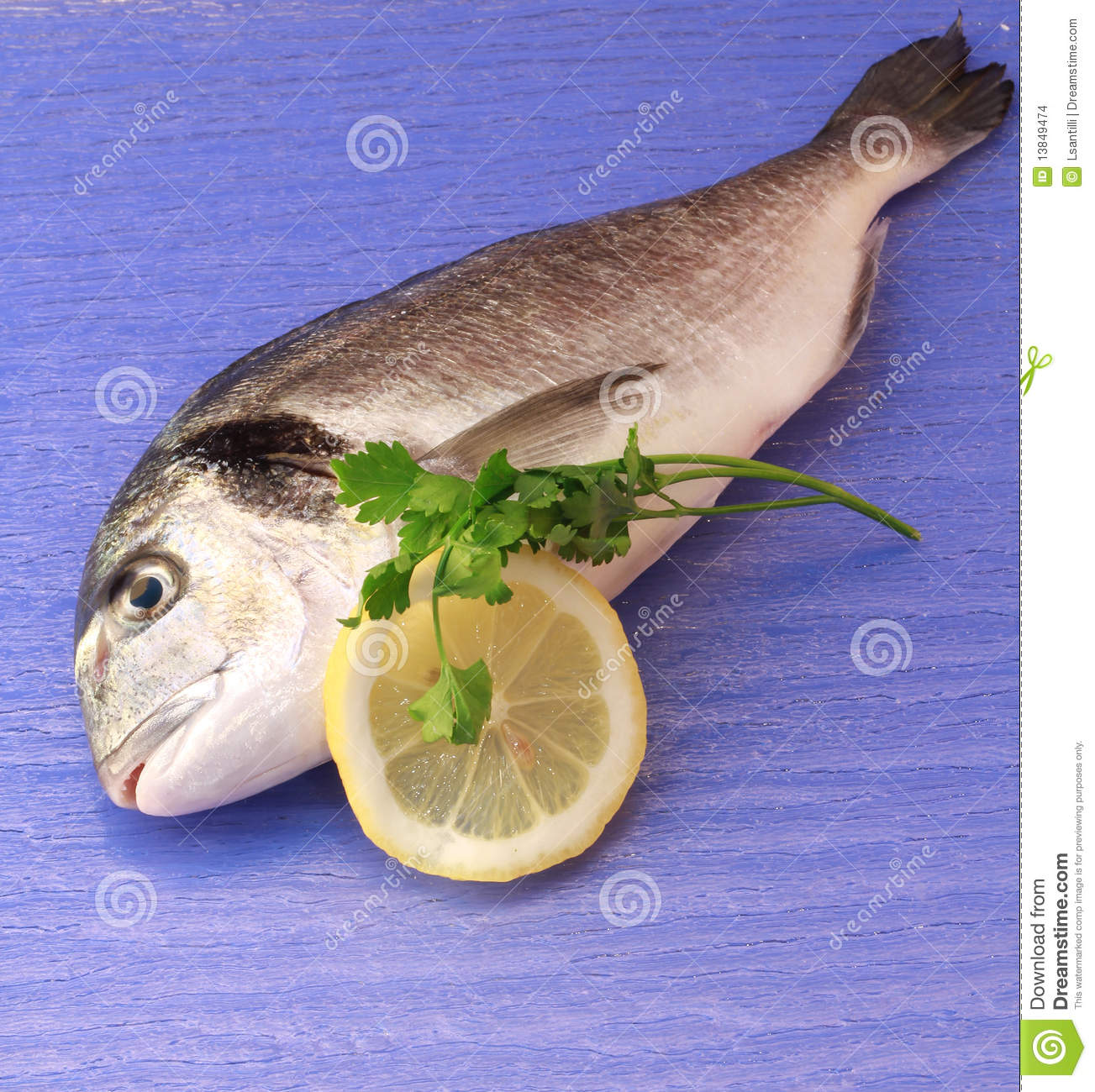 Sea Bream Stock Images - Image: 13849474
