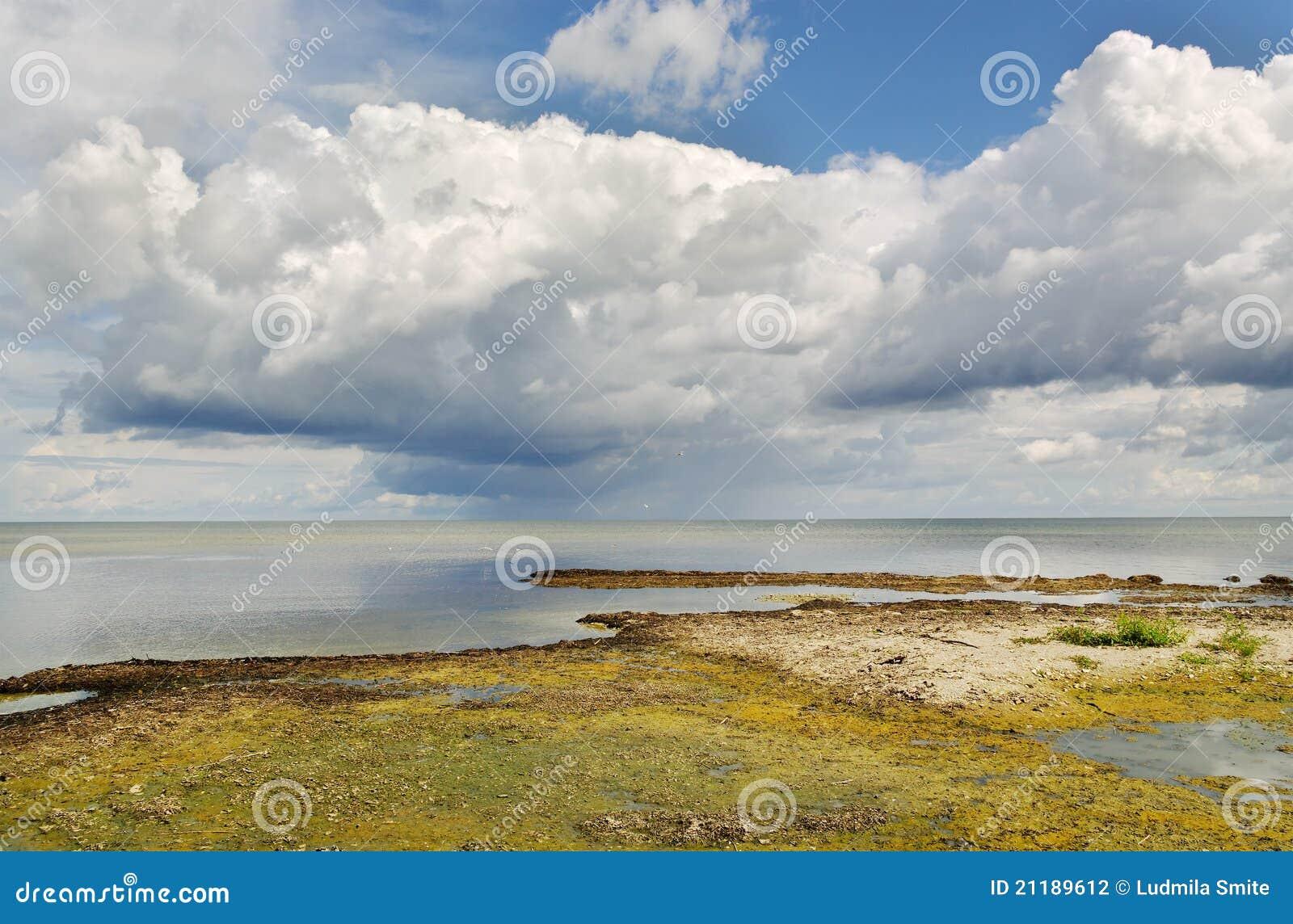 Sea coastline.