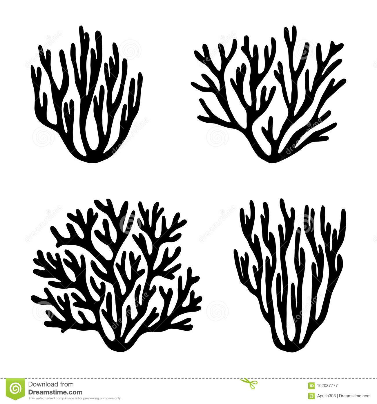 Corals Cartoons Illustrations Amp Vector Stock Images