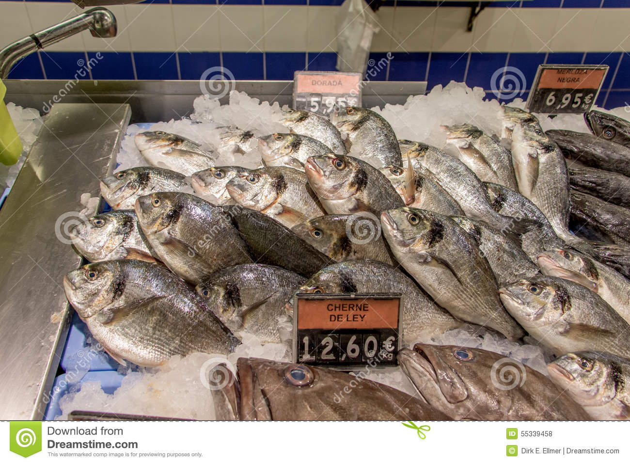 A picture of a meal big fish royalty free stock for Sea city fish and chicken