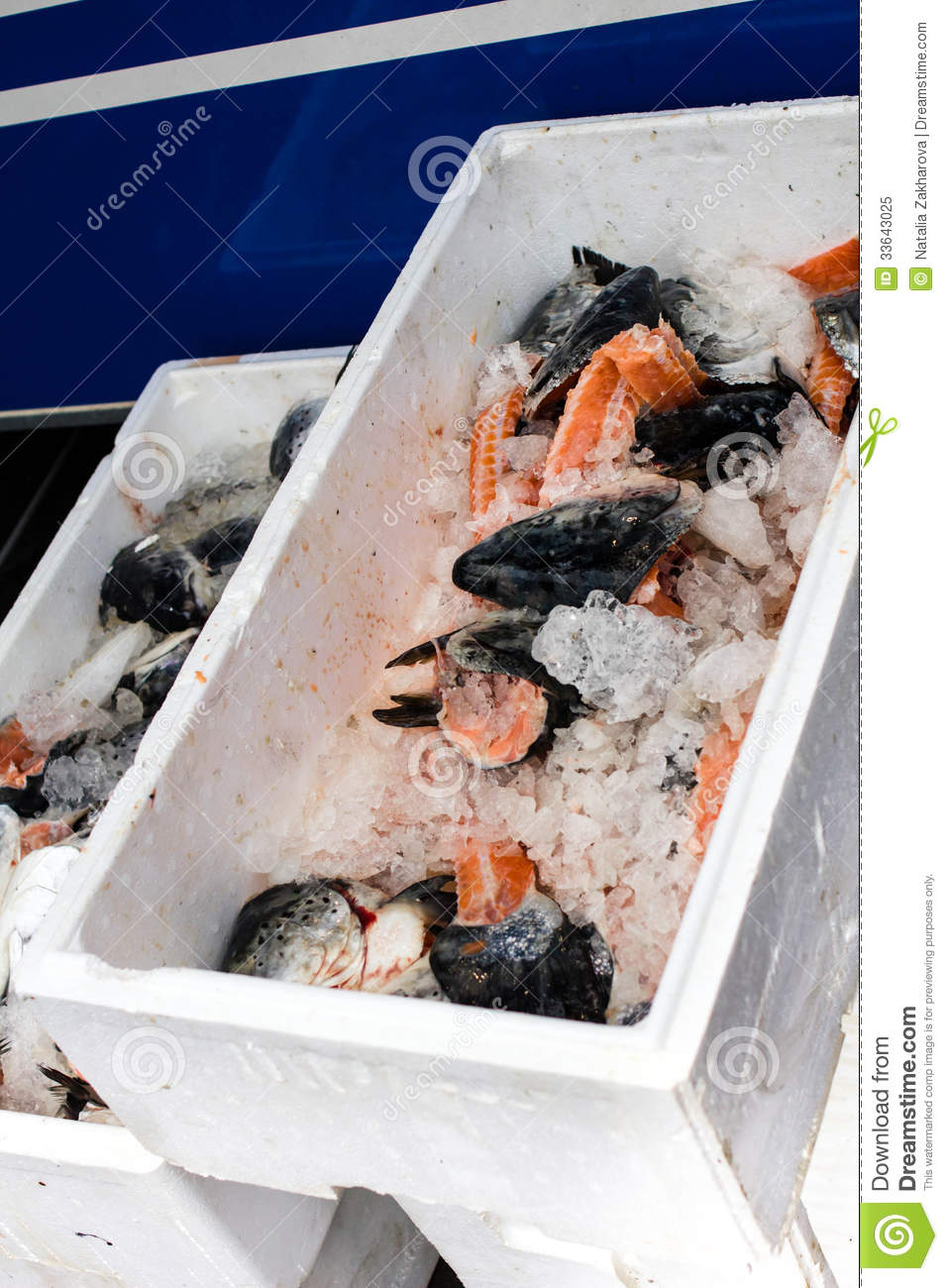 Sea fish and ice in a white box or container on fish for White fish market