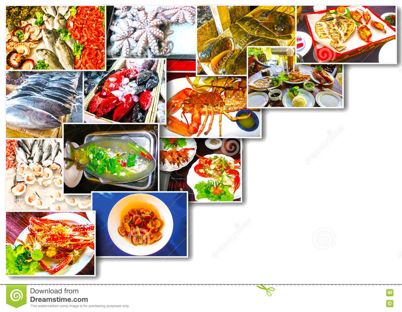 Set Of Fish Dishes Vector Illustration