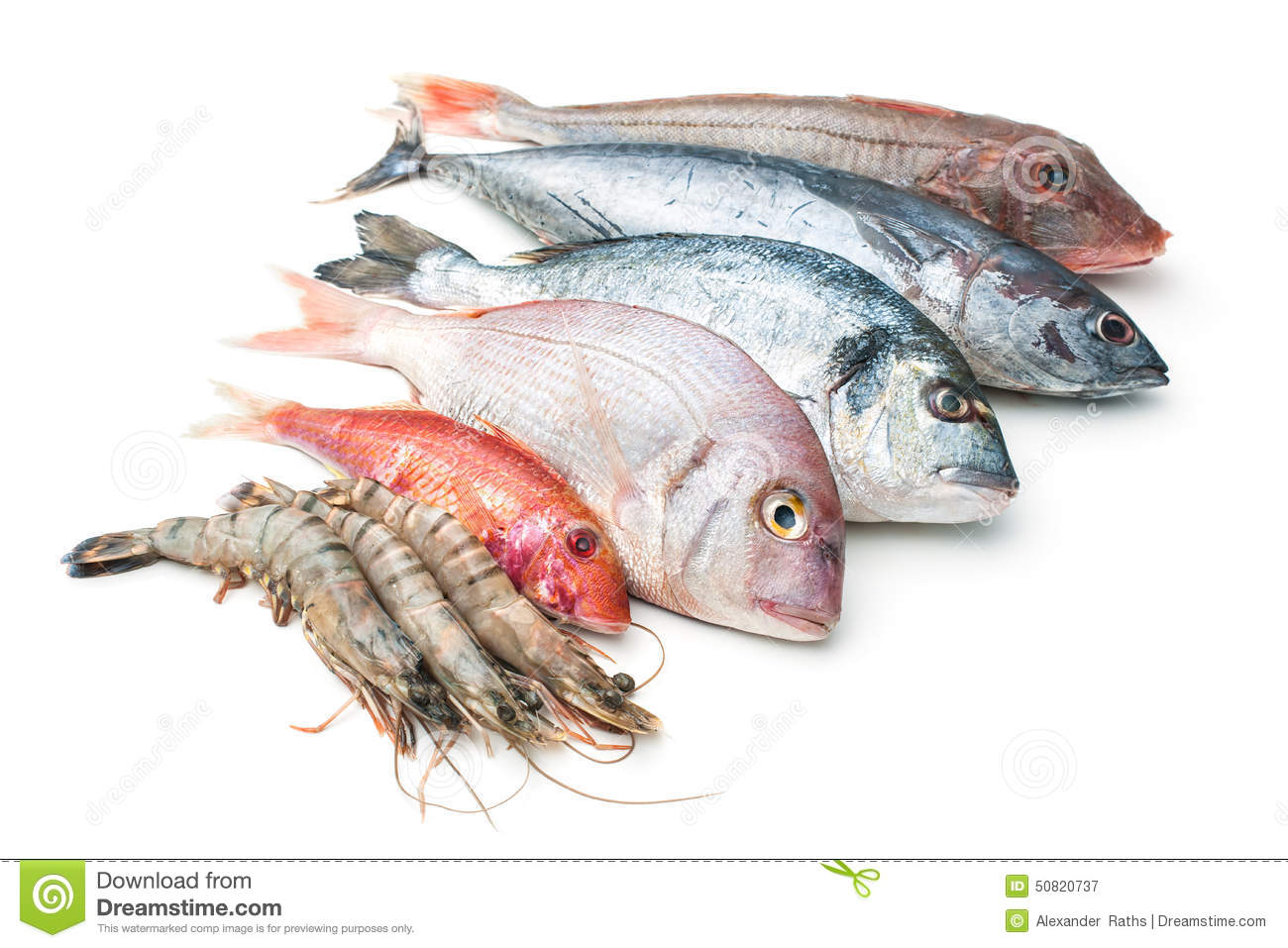 Fish seafood related keywords fish seafood long tail for Is fish seafood