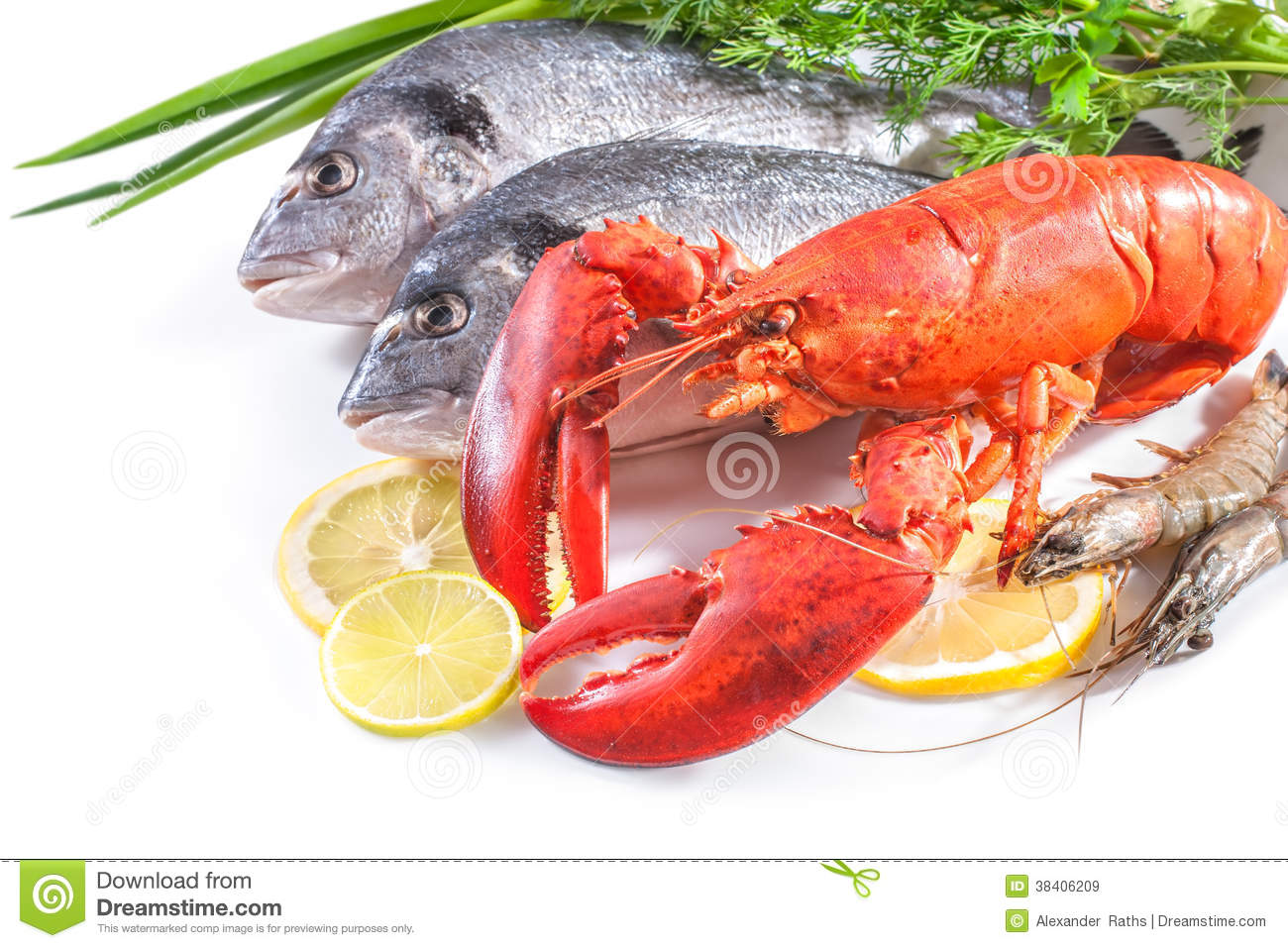 Sea food on white background royalty free stock images for Cooking white fish