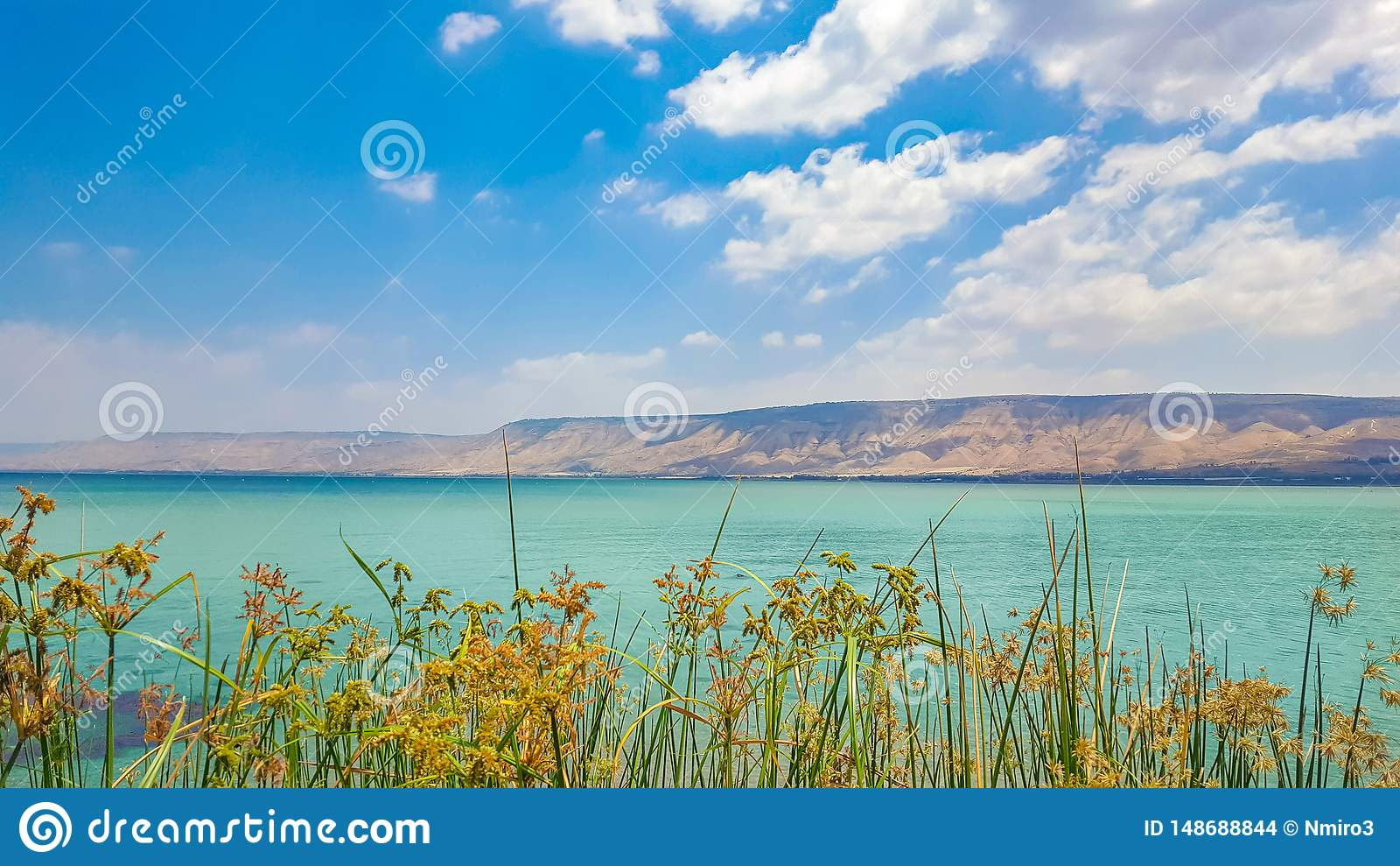 Sea of Galilee view at noon