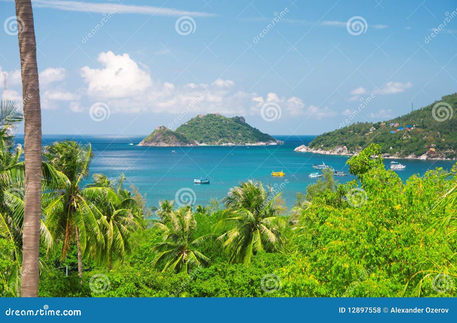 Sea And Jungle  Beautiful Ko Tao Island  Thailand Stock