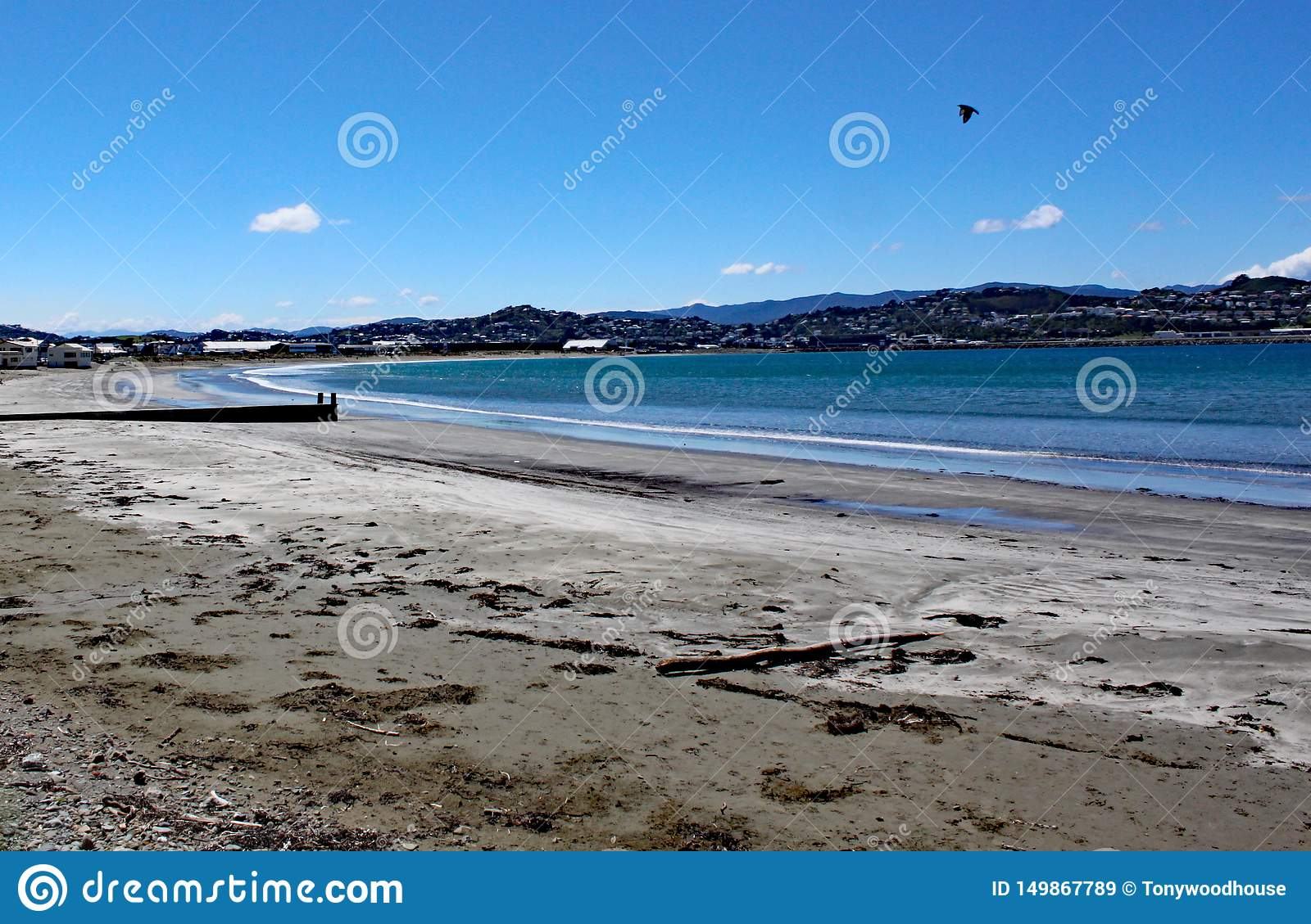 The sea laps gently on the sandy beach at Lyall Bay near Wellington in New Zealand