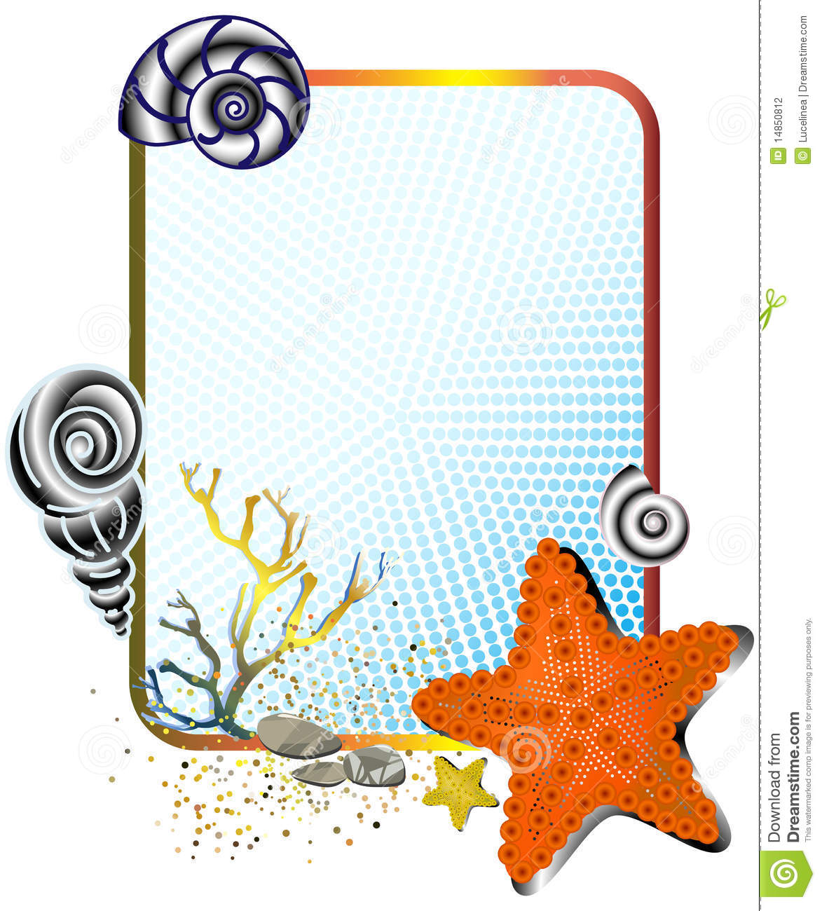 Sea life in frame with starfish