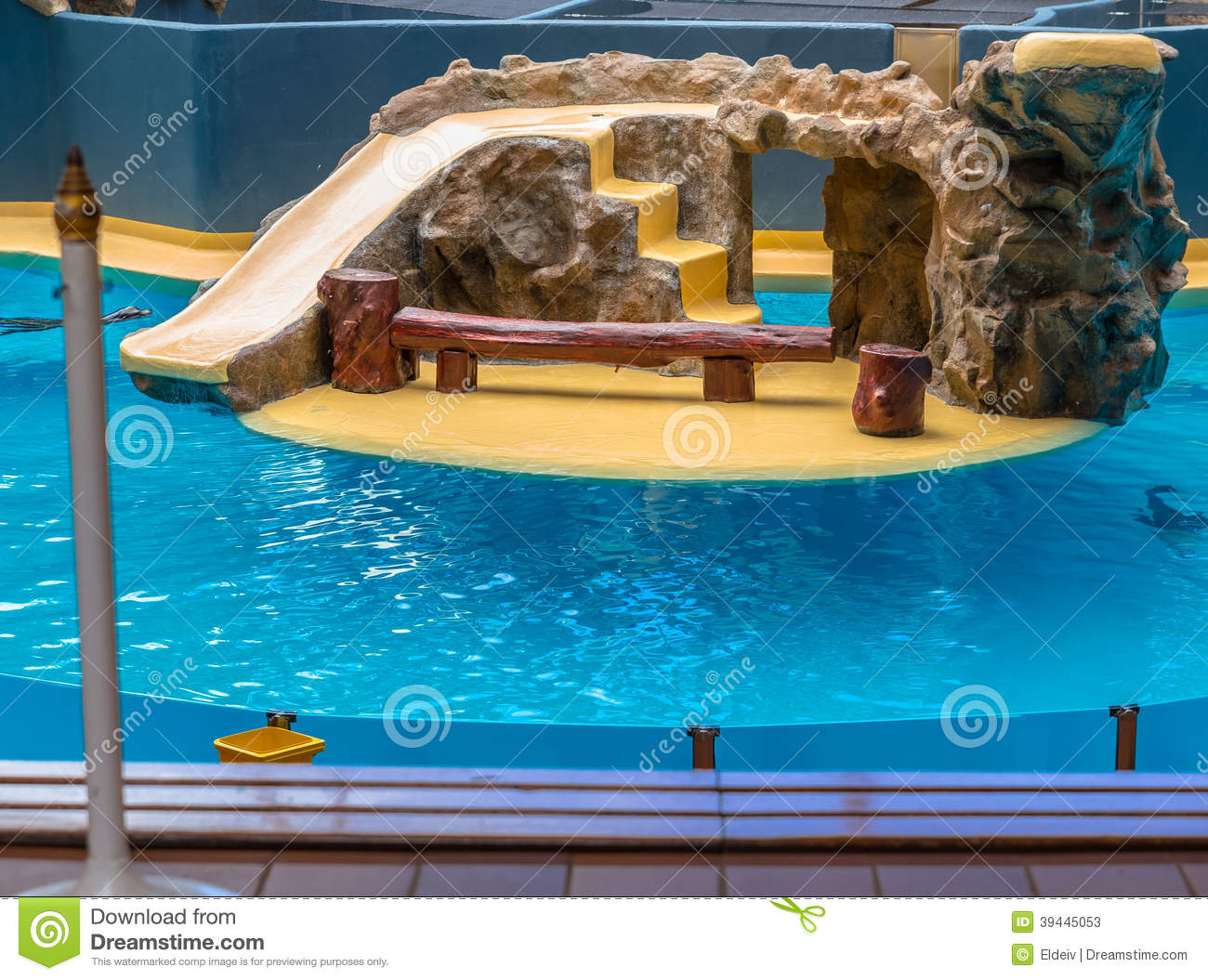 Sea Lions Enclosure stock image. Image of wildlife, lion ...