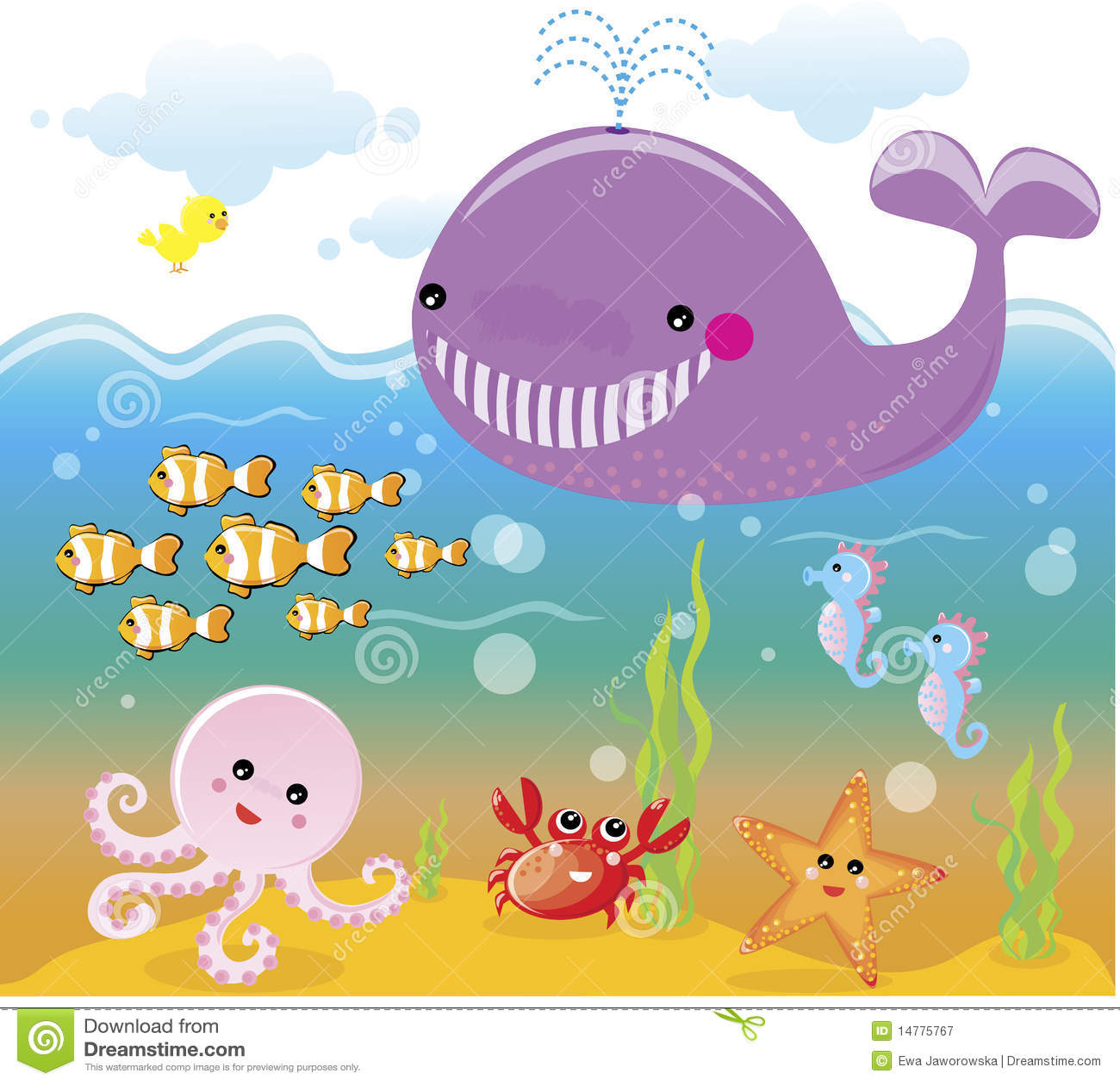 Royalty free stock photography sea ocean life underwater
