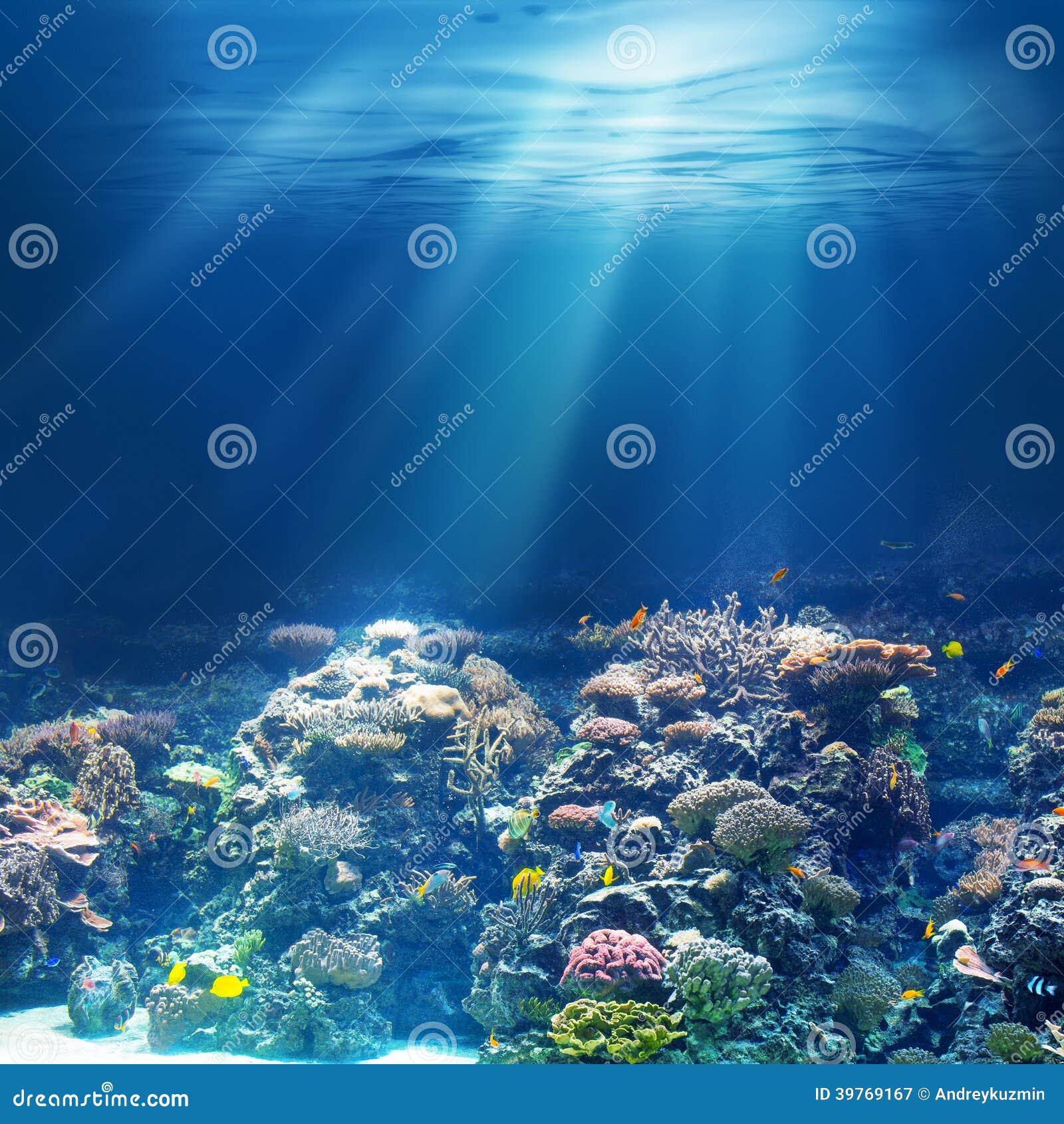 Sea or ocean underwater coral reef snorkeling or diving