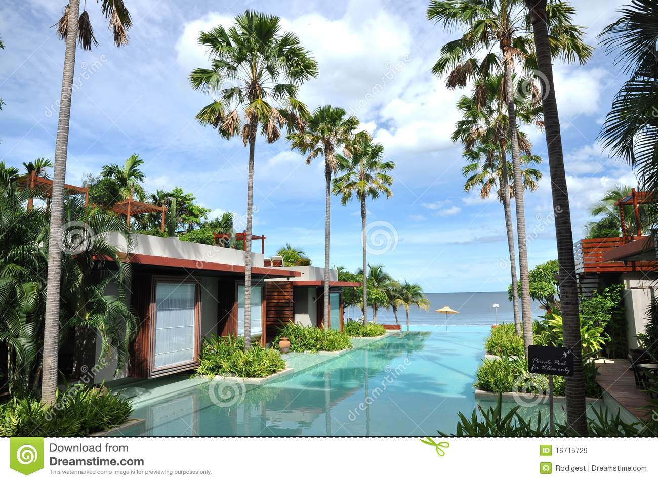 Sea palm tree resort swimming pool royalty free stock images image 16715729 for Best palm tree for swimming pool