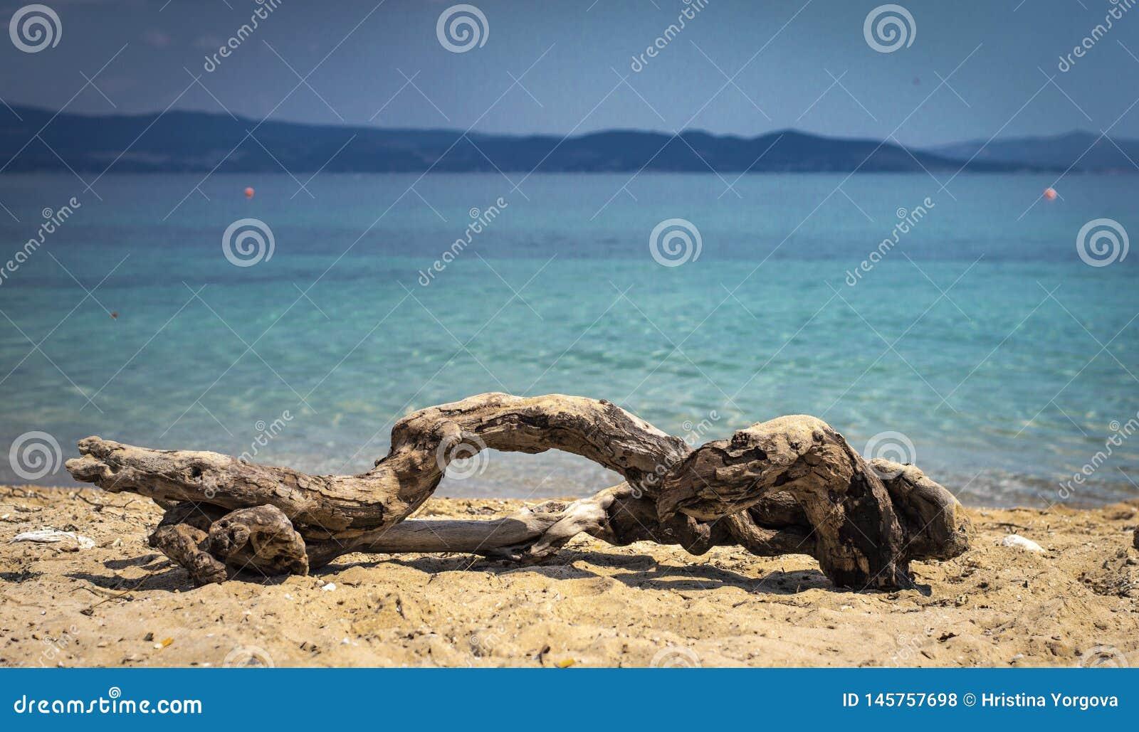 Sea and Sand landscape