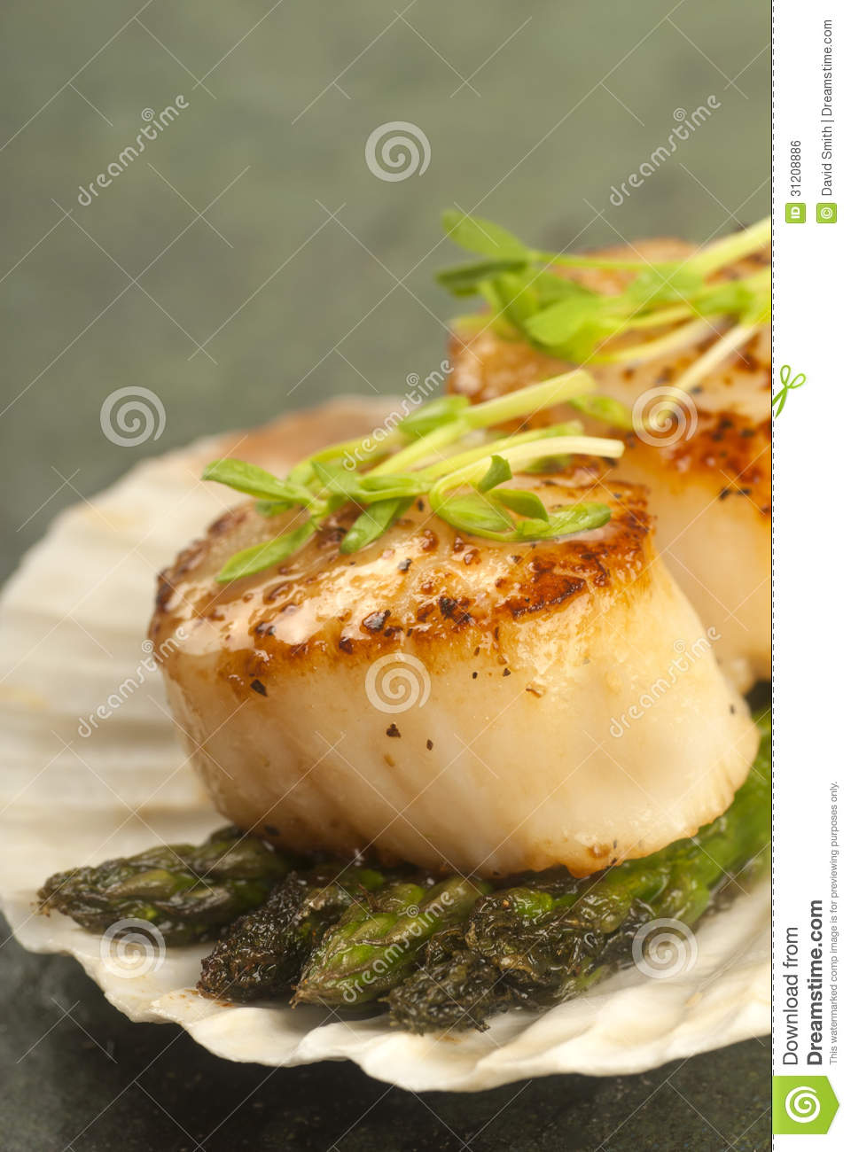 Sea Scallop With Asparagus In A Scallop Shell Royalty Free Stock Image ...