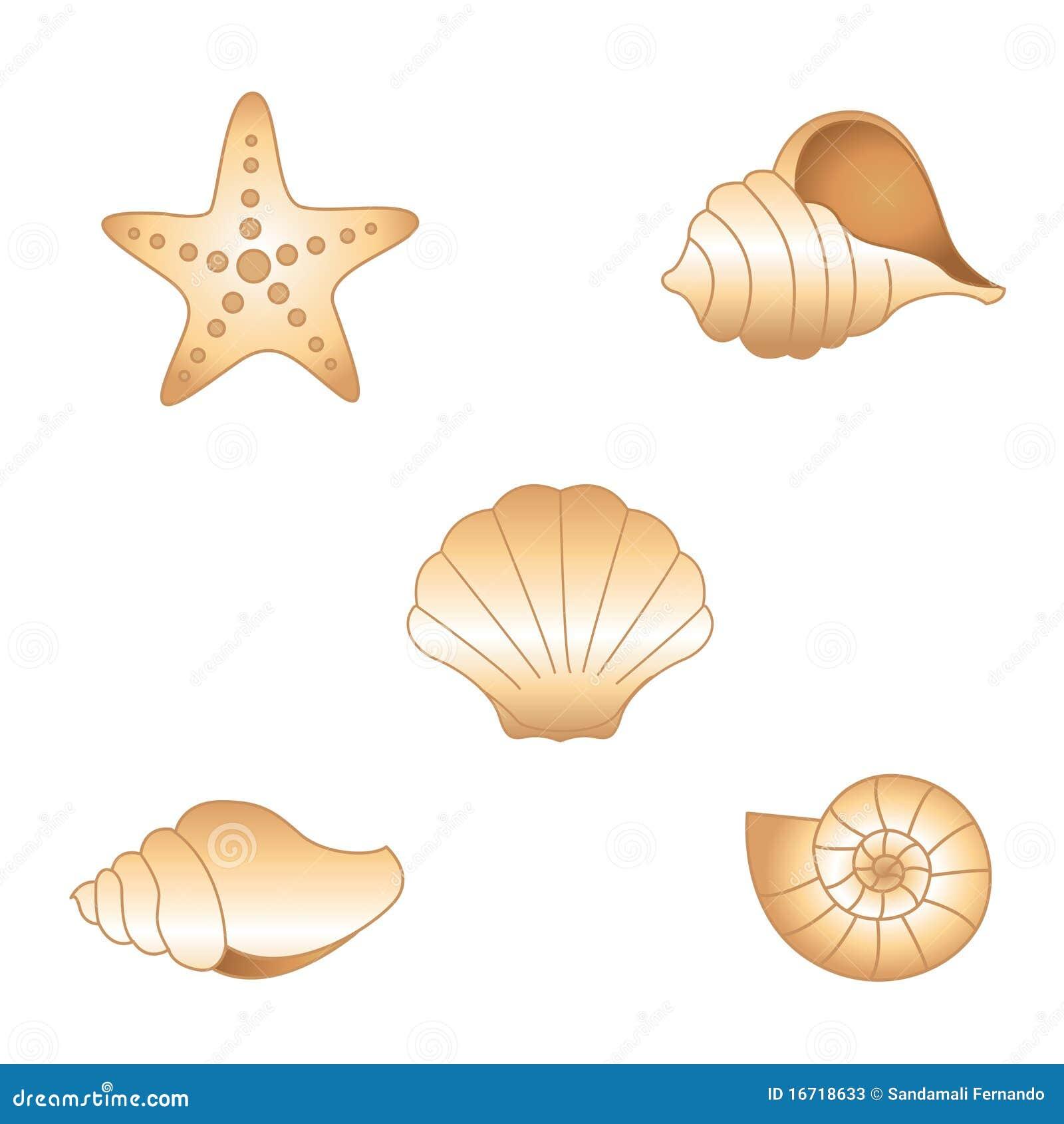 Sea Shells Cartoon_Sky Cartoon_River Cartoon