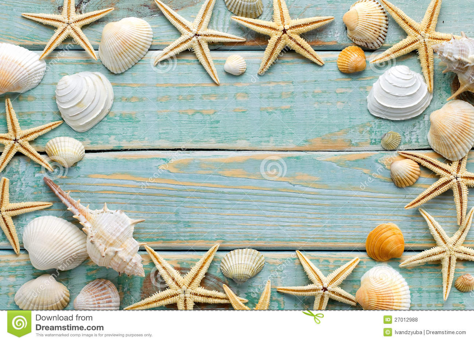 Sea Shells Frame Royalty Free Stock Photos Image 27012988