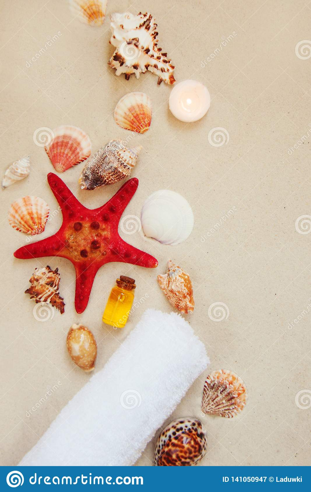 Sea shells and red star fish on sandy beach with copy space for text. Spa salon relax background.