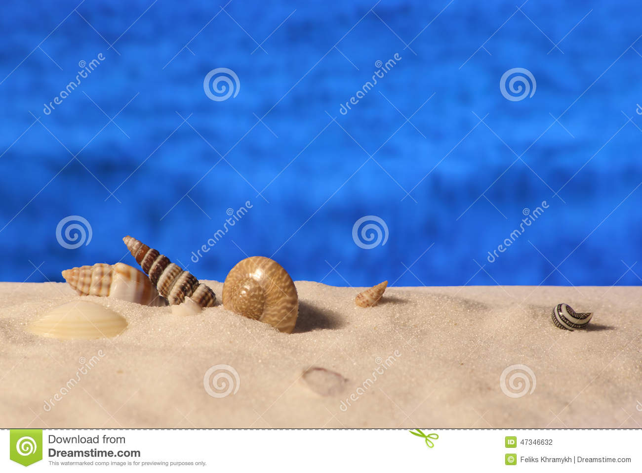 beach with shells and sea animals 2 cartoon vector maryland blue crab clipart maryland blue crab clipart