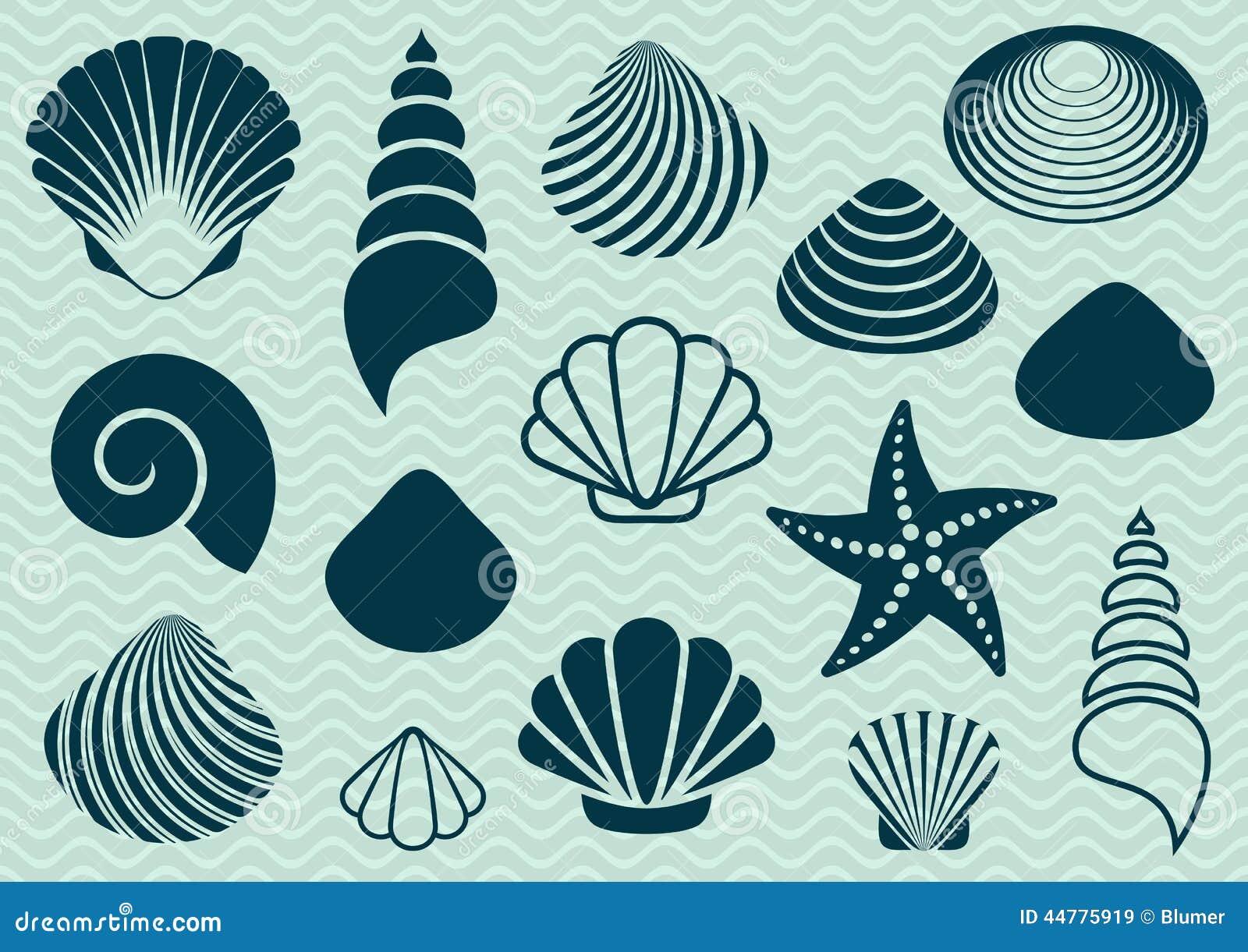 Sea Shells Stock Vector - Image: 44775919