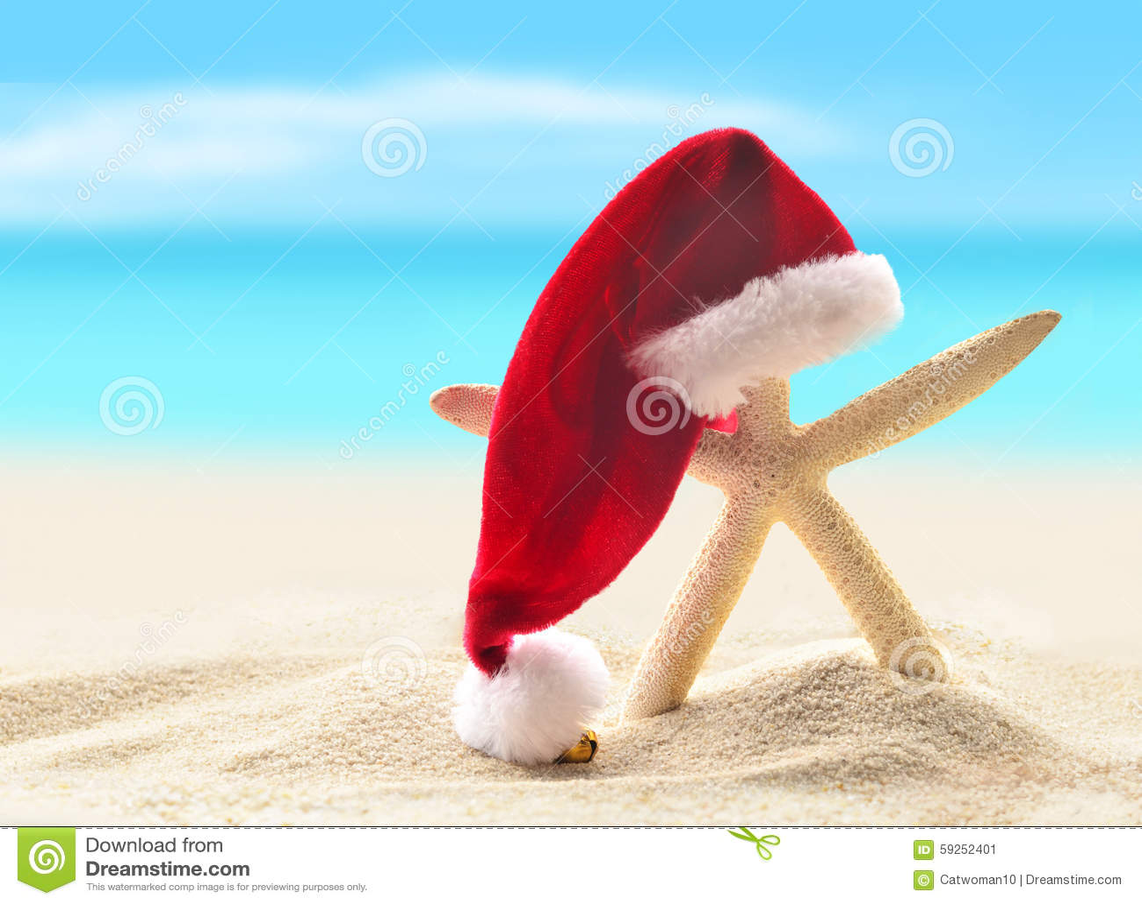Sea-star In Santa Hat Walking At Sea Sandy Beach. Stock Image ...