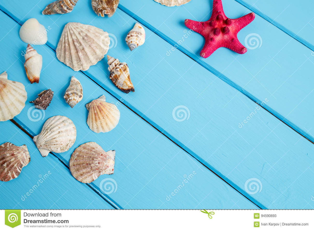 Sea star and shells on wooden blue background.