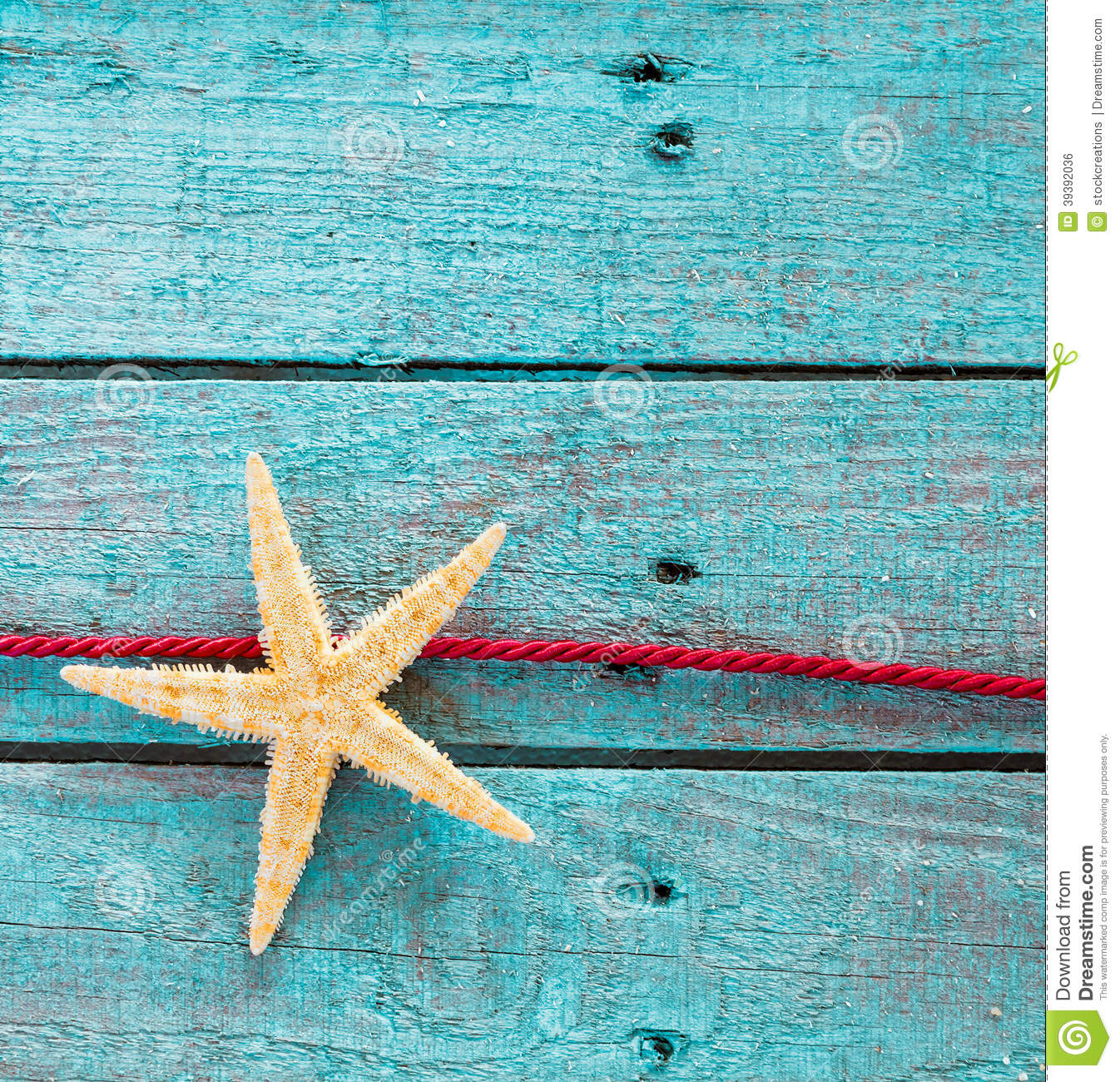 Sea Star Or Starfish With Decorative Red Rope Stock Photo