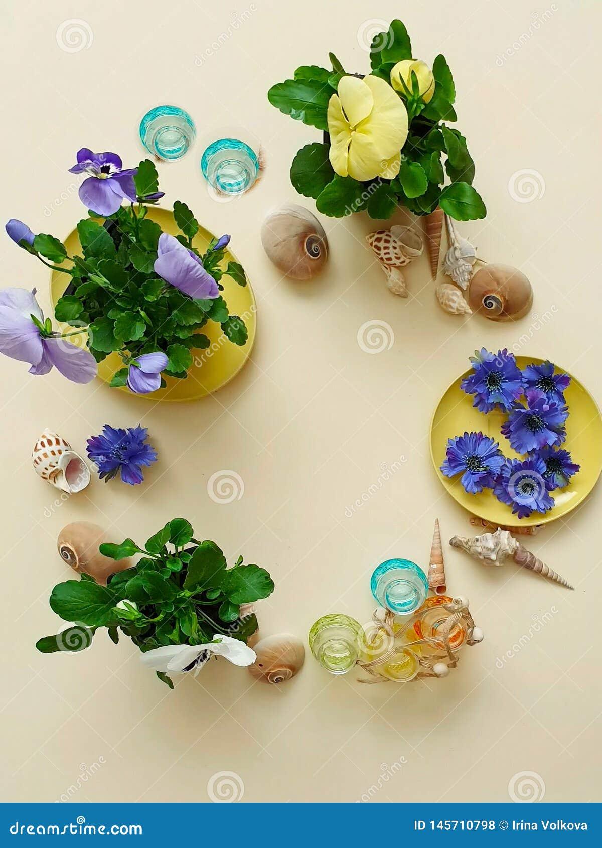 sea stones shells flowers wreath garland crown chaplet coronet