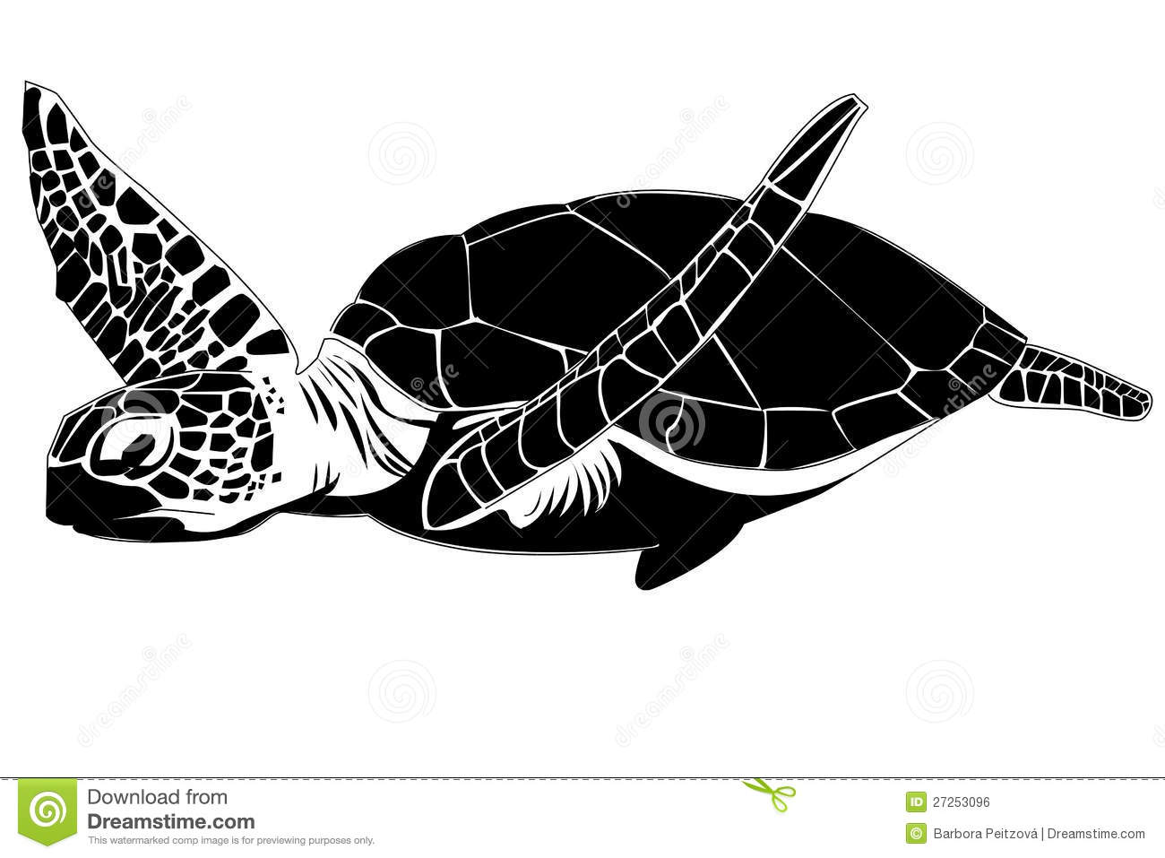 Sea Turtle Royalty Free Stock Image - Image: 27253096