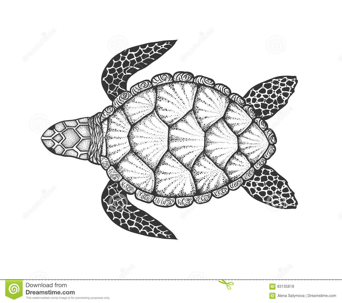 Sea Turtle In Line Art Style Hand Drawn Vector Illustration Top View Design For Coloring Book Set Of Ocean Elements