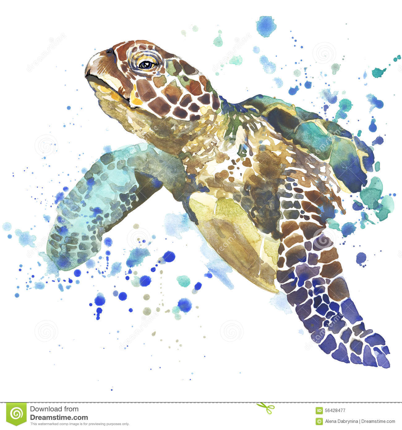 Turtle Design For T Shirt