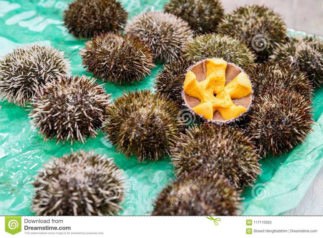 Sea Urchin Fresh Uni Japanese Fresh Raw Food In The Shell At F