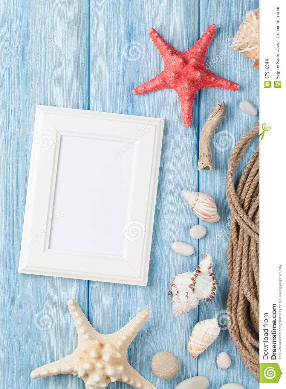 Frame of fish hibiscus and sea turtles cartoon vector for Fish photo frame