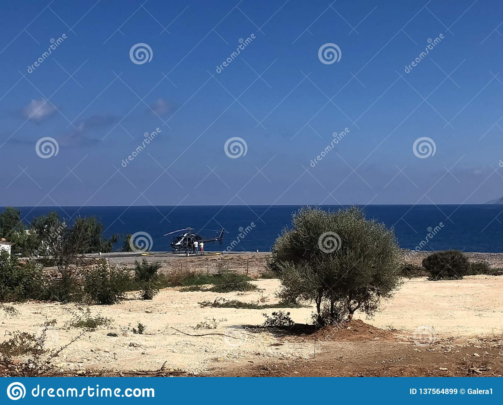 Sea view with bushes and a helicopter