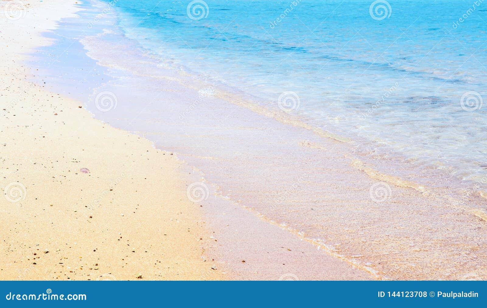 Sea wave on the sandy beach