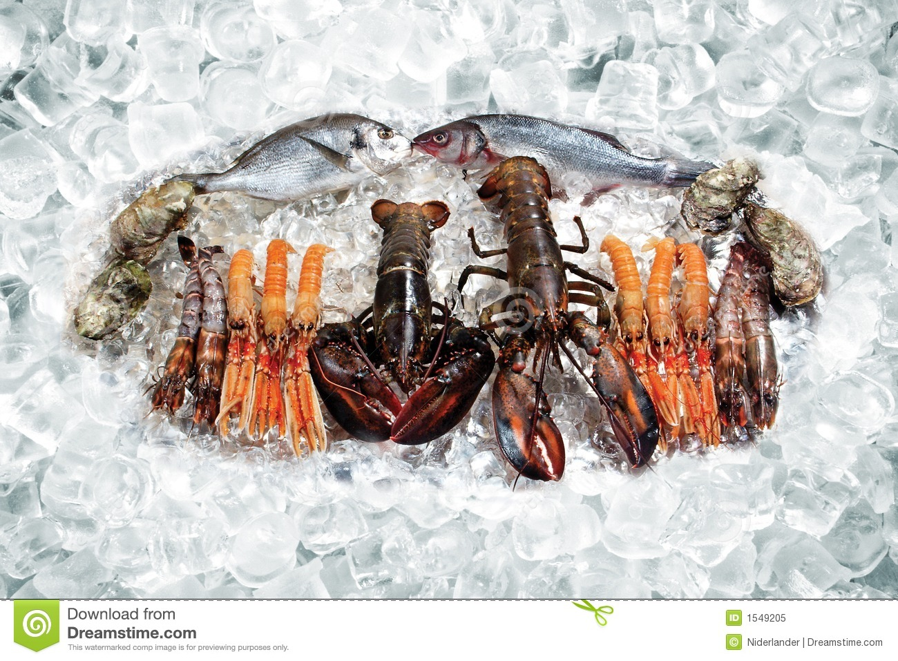 Seafood On Ice Royalty Free Stock Photo - Image: 1549205