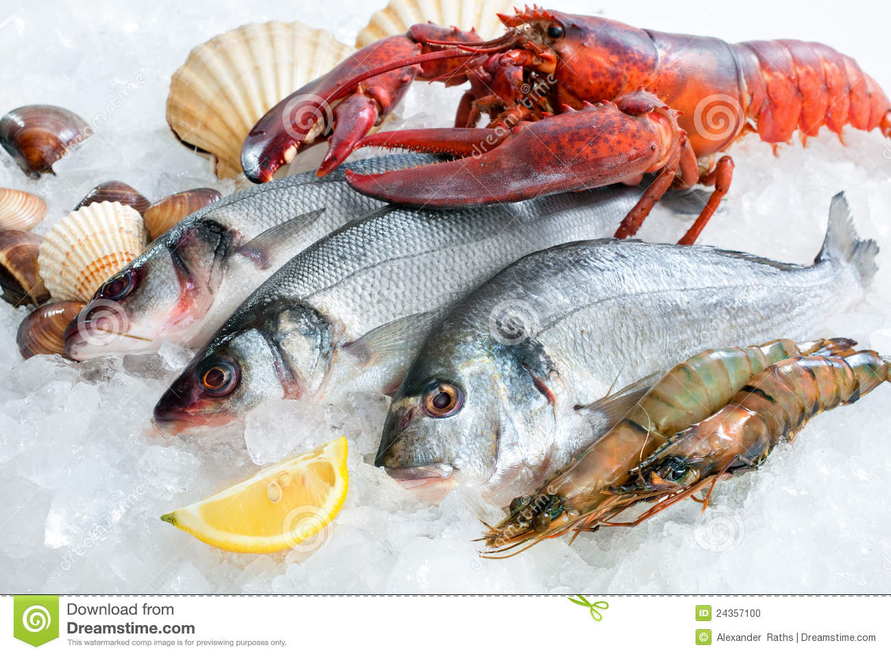 Seafood on ice stock photo image of ingredient eating for Fish and seafood