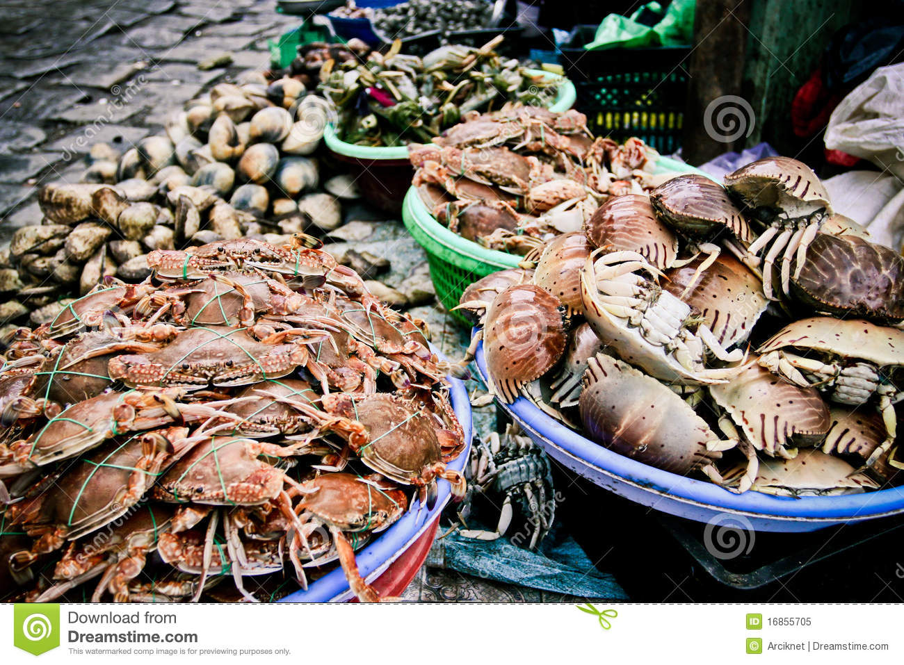 Seafood market royalty free stock photo image 16855705 for Seafood fish market
