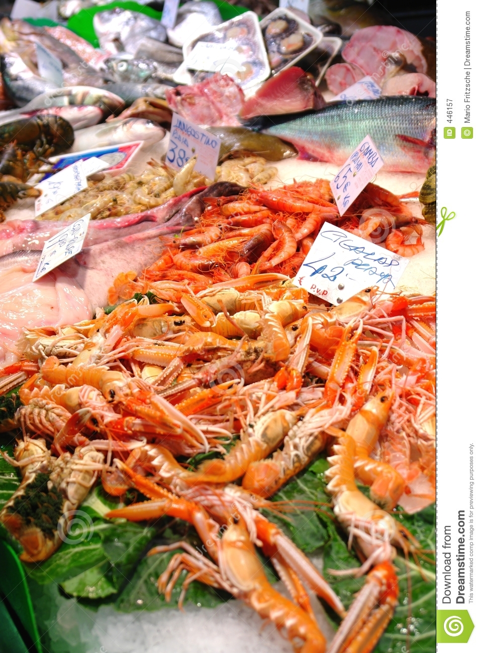 Seafood Market Royalty Free Stock Photography - Image: 446157