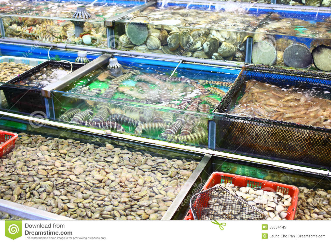Seafood market fish tank royalty free stock photo image for Fish stock tank