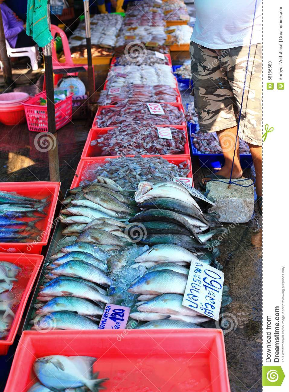 Seafood for sale stock photo image 58156689 for Fresh fish market near me