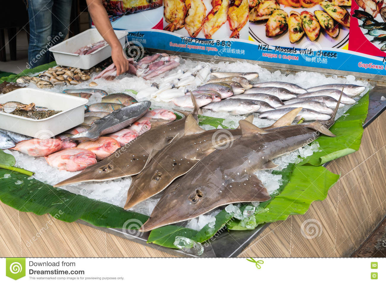 Seafood And Sharks For Sale On Street In Phuket, Thailand