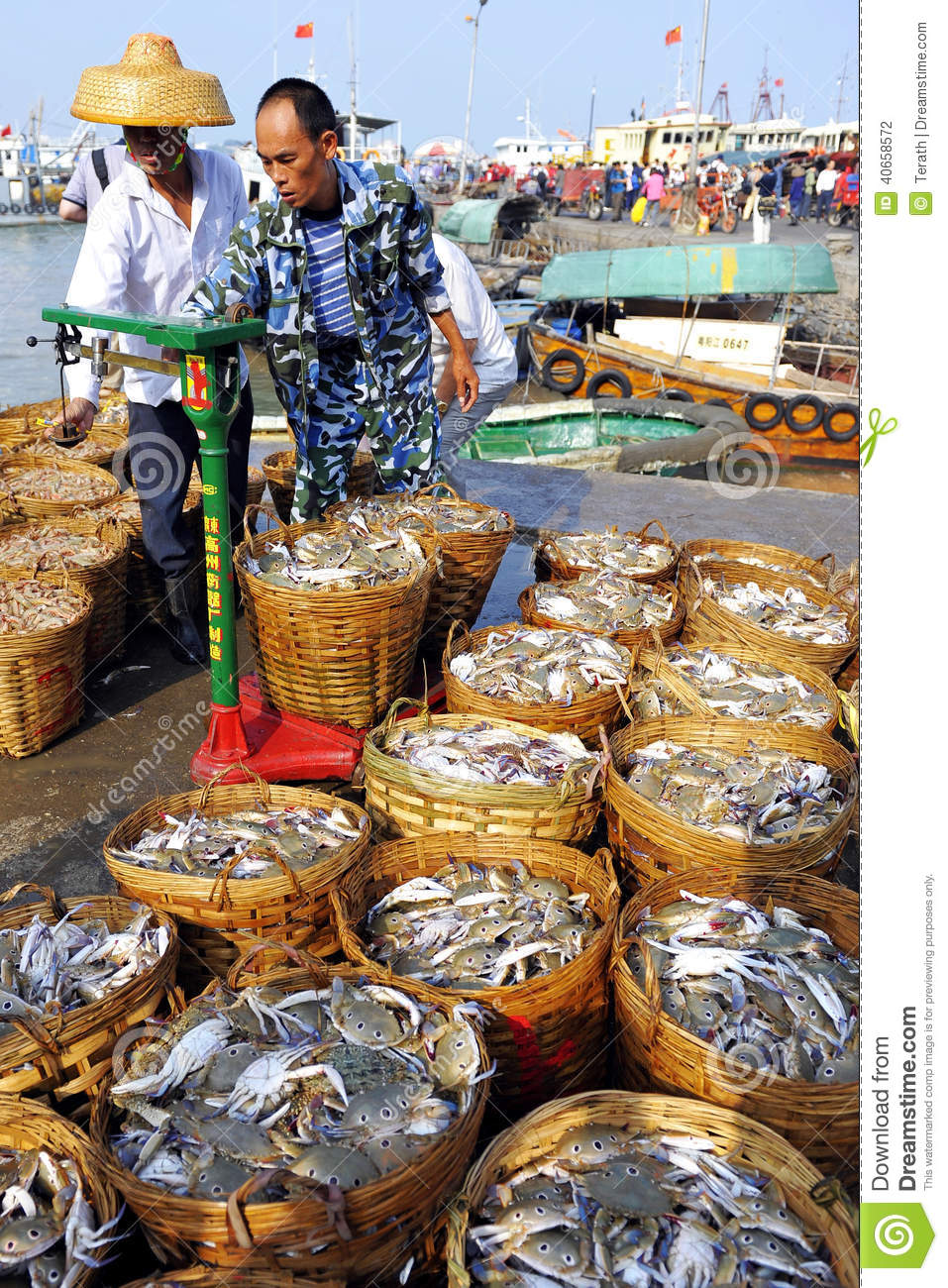 How to Start a Fish Market Business
