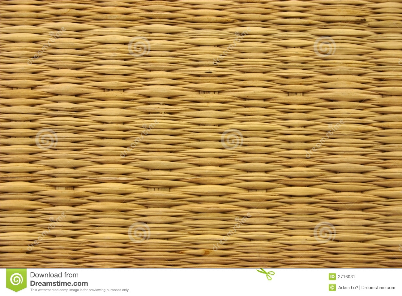 Seagrass Mat Stock Image Image 2716031