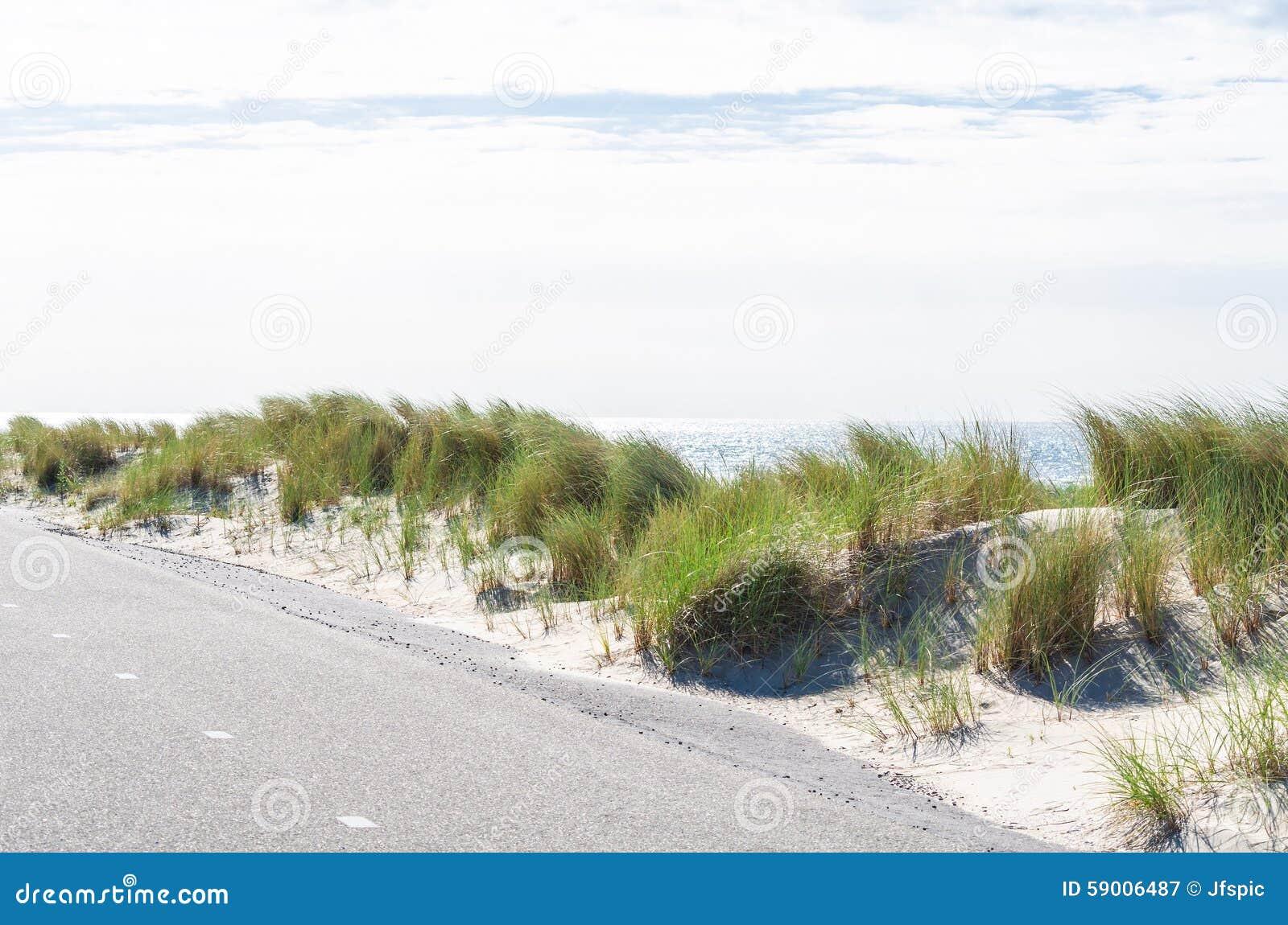 Seagrass-, strand- och sanddyn