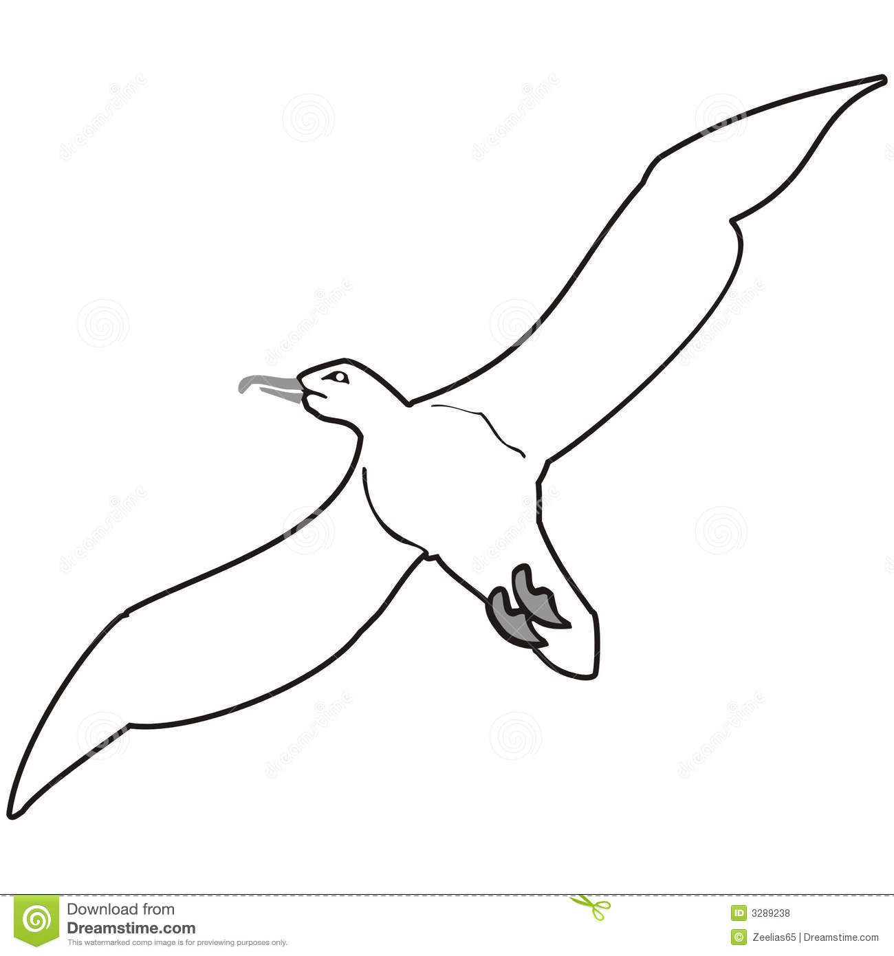 Seagull Royalty Free Stock Photos - Image: 3289238