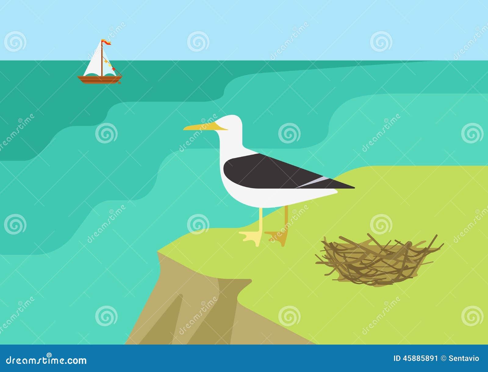 Seagull Gull Nest Beach Flat Cartoon Vector Wild Animals Birds Stock ...