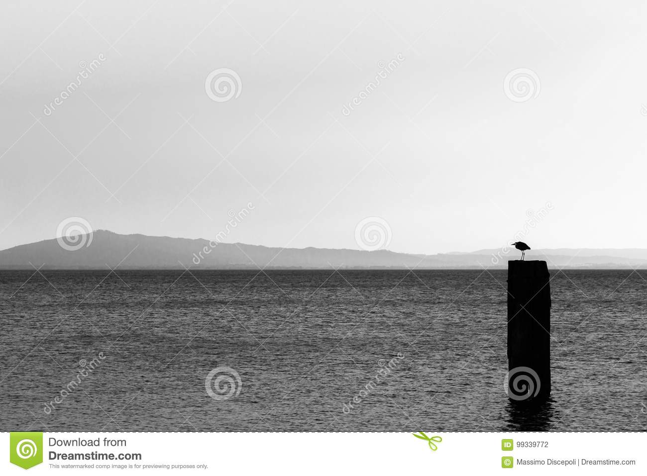 A seagull over a pole on a lake, with distant hills in the background and very soft tones