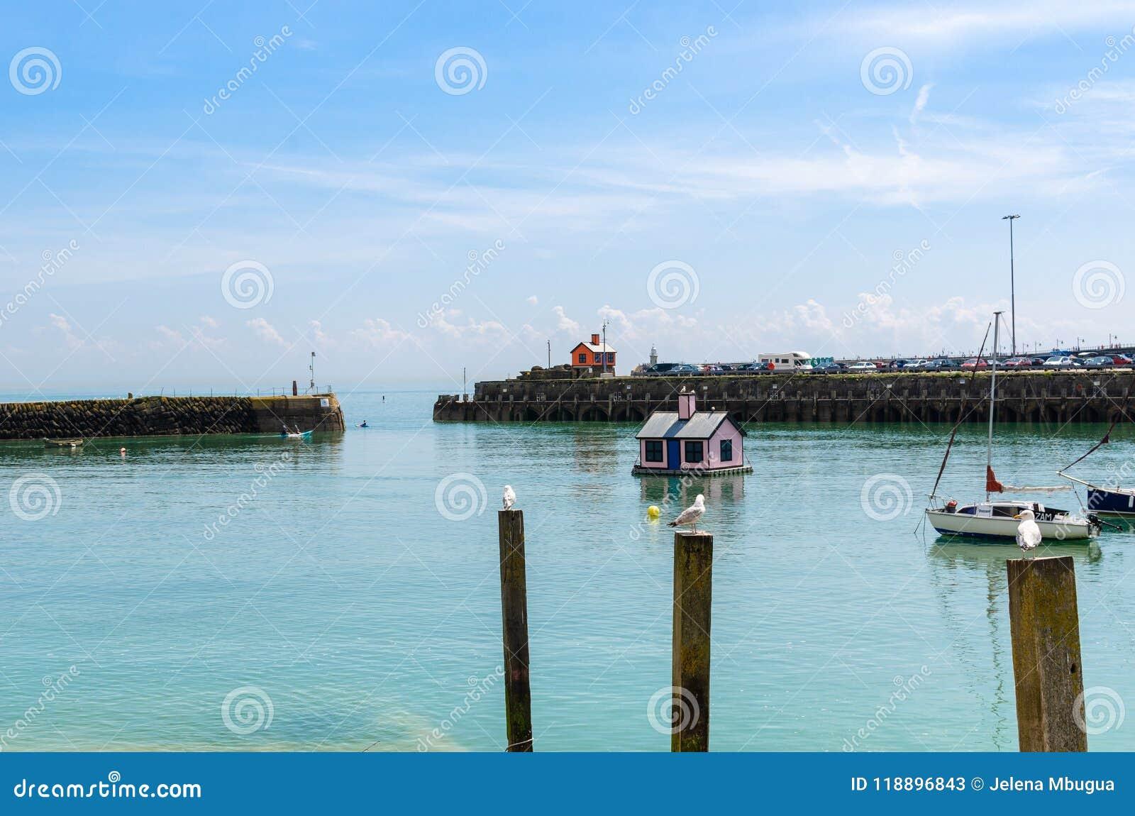 Seagulls και ένα επιπλέον ρόδινο μπανγκαλόου στο λιμάνι Folkestone