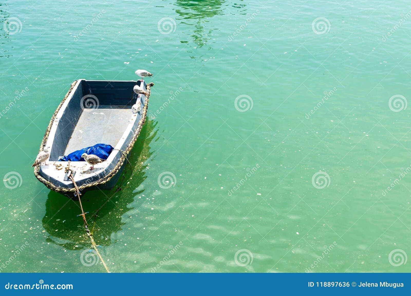 Seagulls σε ένα κενό ξύλινο αλιευτικό σκάφος στα τυρκουάζ νερά