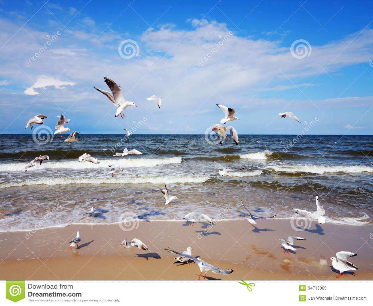 oil painting of ocean waves and seagulls